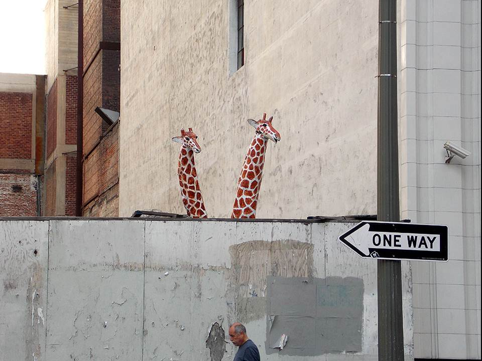 One Way - Giraffes