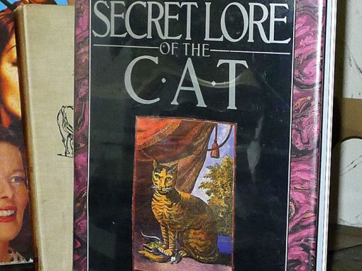 The Secret Lore of the Cat