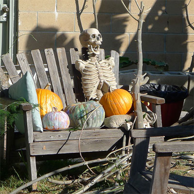 Neighborhood Skeleton